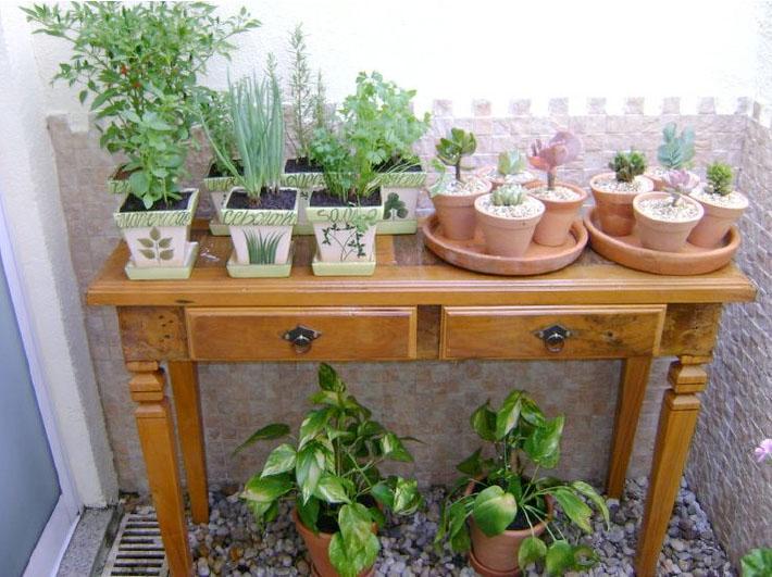 mini jardim em apartamento : horta-no ape-cma-4 Comprando Meu Ap?