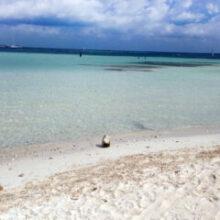 Dicas sobre Cancun