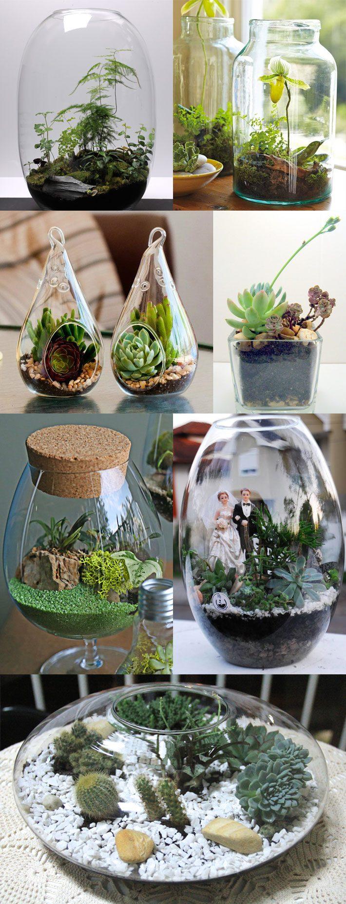 Como fazer um terr rio mini jardins em potes de vidro for Modelos de mini apartamentos