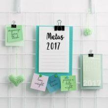 Metas 2017 em 5 pilares de organização